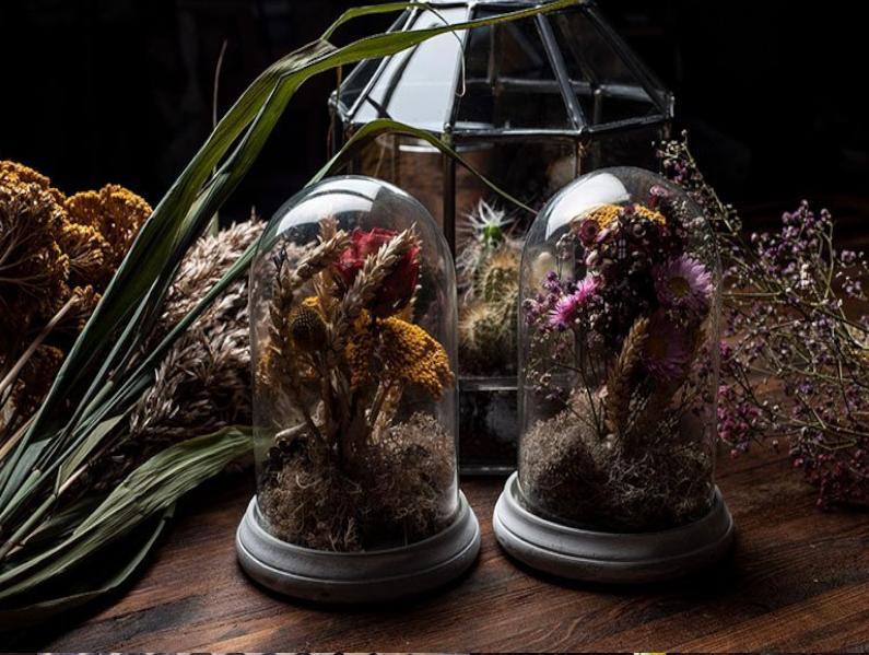 Présentation fleurs sèchées